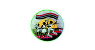 National Youth Council [LOGO]