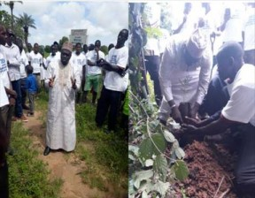 Environment minister leads 1, 500 tree planting at Mandinaba - COVER IMAGE